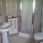 La salle de bain spacieuse avec douche indépendante et jacuzzi