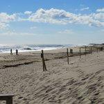 Best beach to walk