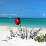 Pine Cay Beach