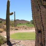 Par 3 view from between the saguaros