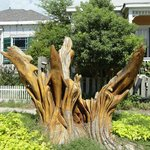 Tree stump carving of a wave.