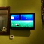 boa tv