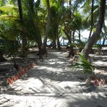 A conch-lined path from nowhere to nowhere up the middle of the caye.