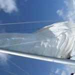 The sail...