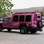 Pink Jeep - regular (shuttle)