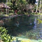 quieter pool area