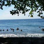 Shore divers
