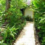 Jardín verde Palmira con más de 100 especies