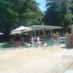 main pool, swim up bar
