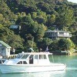 Kawau Lodge & Dolphin Endeavour