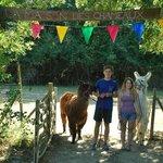 La Maison des Chameaux- parc animalier unique et interactif!