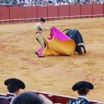 Action - Bull vs Man