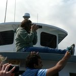 Brittany, one of the naturalists, taking photos and telling us all about whales she has known.