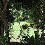 Die schöne Gartenanlage