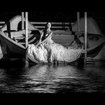 Ночью у баасейна устроили свадебную фотосессию