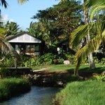 Kabana number 4, nearest the lagoon.