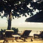 На пляже куча зонтов и удобные лежаки