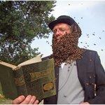 bee beard event