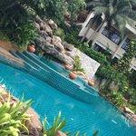 piscine du bas