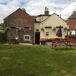 Beer Garden & rear of property