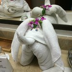 Towel creation left by Adriana on our last day.