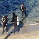 Divers at The Cove