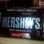 5lbs of chocolate!!