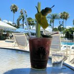 Awesome Bloody Mary's poolside
