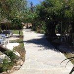 Jardim fantastico