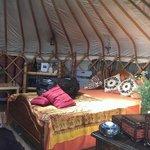 Inside Beech Tree Yurt