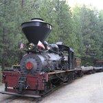 Sugar Pine Steam Train