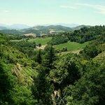 Le colline marchigiane