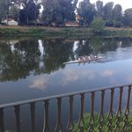 The rowers on the Arno River outside our room.