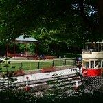tram through the trees