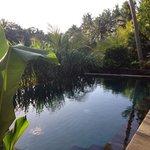 Bilde fra Gusde House & Villa