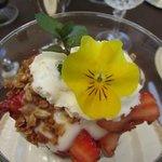 Fruit parfait with home-made granola and yogurt and edible garnish