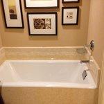 Huge soaking bathtub