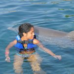 Hardly can see dolphin, dolphin swam while kids had to be quick to touch it