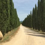 Road leading to Agriturismo
