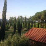 View of grounds from Il Pino