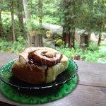Tasty cinnamon bun with a stellar view
