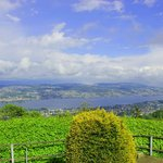View from Uetliberg, overlooking Lake Zurich