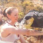 vulture display