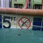 scum on pool