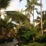 Secrets Royal Beach Preferred Suites