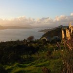 The twilight tour stops to look over the view of the Hokianga Harbour