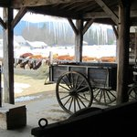 cow barn and old wagons