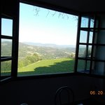 View from inside restaurant