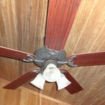 One of two ceiling fans