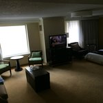 Suite had a comfy murphy bed and lots of room